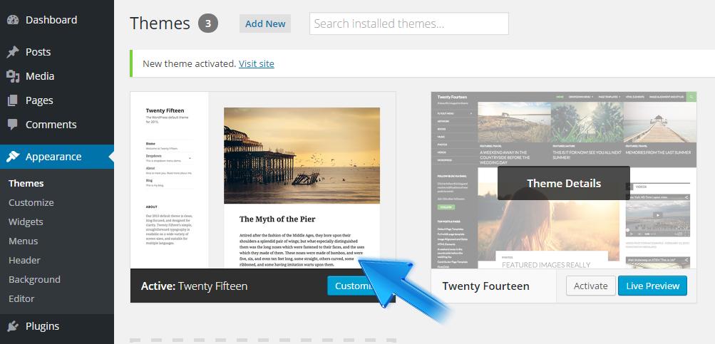 Delete WordPress Theme Through Dashboard And Manually