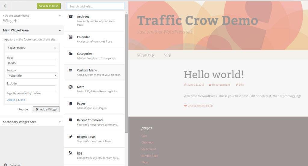 Widget-management-in-the-WordPress-Theme-Customizer-13