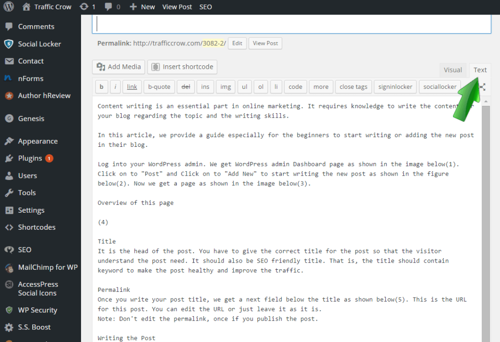 Creating and Publishing Your First WordPress Blog Post 6