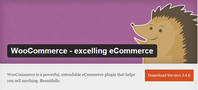 Top-5-eCommerce-Plugins-for-your-WordPress-Site-01