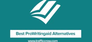 Best ProWritingAid Alternatives
