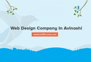 web design company in Avinashi