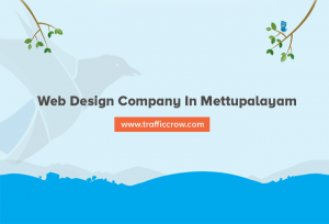 web design company in Mettupalayam