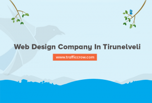 web design company in Tirunelveli