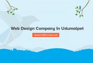 web design company in Udumalpet
