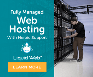 Web Hosting Black Friday Banner